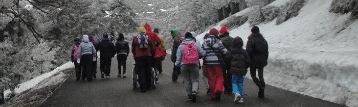 Excursión a la nieve. Navacerrada 2014